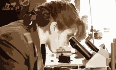 О стилистическом контексте детектива и методах его исследования